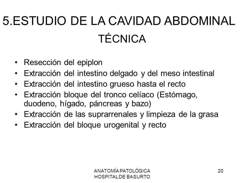 ANATOMÍA PATOLÓGICA HOSPITAL DE BASURTO 20 TÉCNICA Resección del epiplon Extracción del intestino delgado y del meso intestinal Extracción del intesti