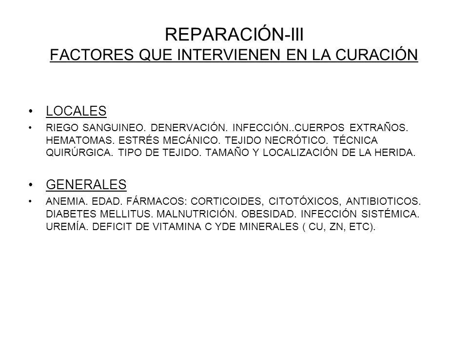 REPARACIÓN-III FACTORES QUE INTERVIENEN EN LA CURACIÓN LOCALES RIEGO SANGUINEO. DENERVACIÓN. INFECCIÓN..CUERPOS EXTRAÑOS. HEMATOMAS. ESTRÉS MECÁNICO.