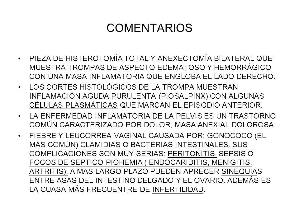 COMENTARIOS PIEZA DE HISTEROTOMÍA TOTAL Y ANEXECTOMÍA BILATERAL QUE MUESTRA TROMPAS DE ASPECTO EDEMATOSO Y HEMORRÁGICO CON UNA MASA INFLAMATORIA QUE E