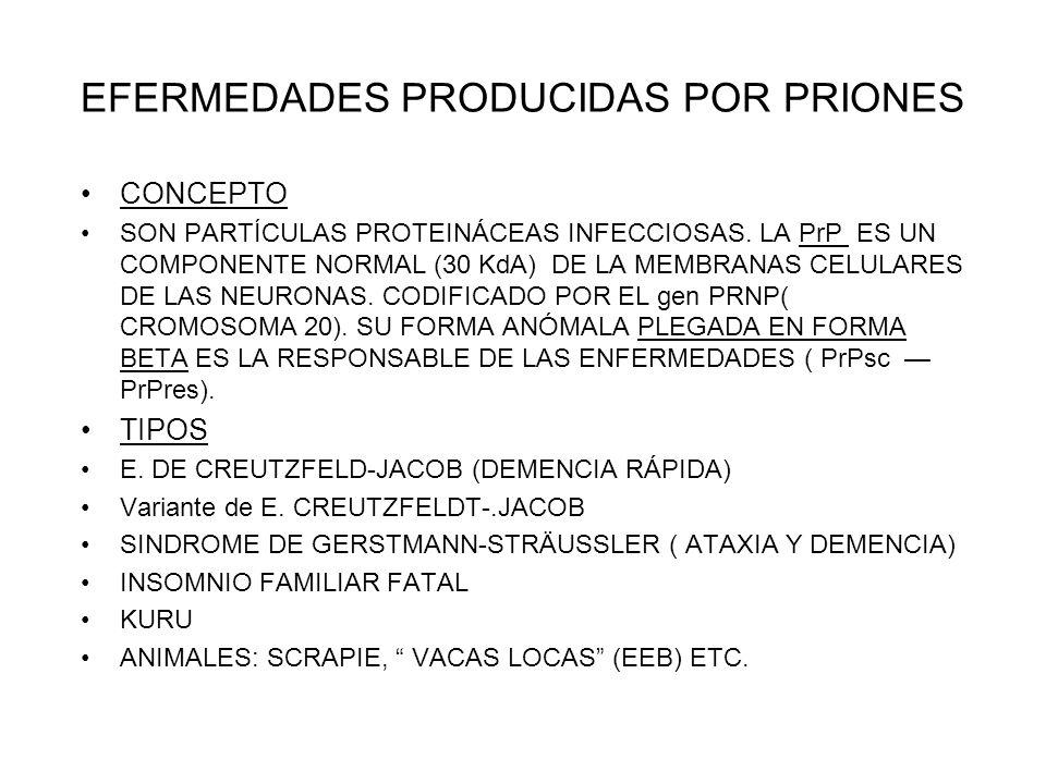 EFERMEDADES PRODUCIDAS POR PRIONES CONCEPTO SON PARTÍCULAS PROTEINÁCEAS INFECCIOSAS. LA PrP ES UN COMPONENTE NORMAL (30 KdA) DE LA MEMBRANAS CELULARES