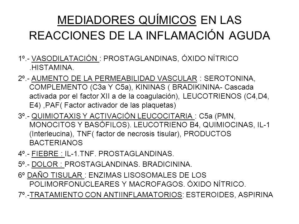 PERICARDITIS FIBRINOSA-SINEQUIAS