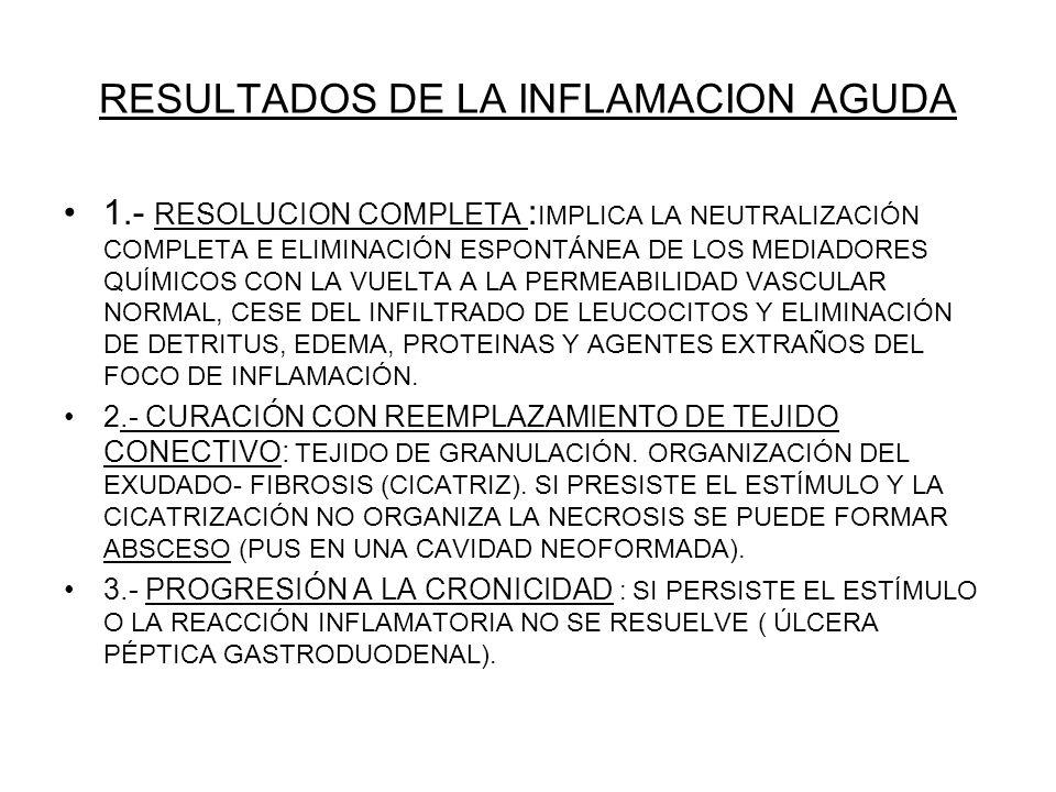 RESULTADOS DE LA INFLAMACION AGUDA 1.- RESOLUCION COMPLETA : IMPLICA LA NEUTRALIZACIÓN COMPLETA E ELIMINACIÓN ESPONTÁNEA DE LOS MEDIADORES QUÍMICOS CO
