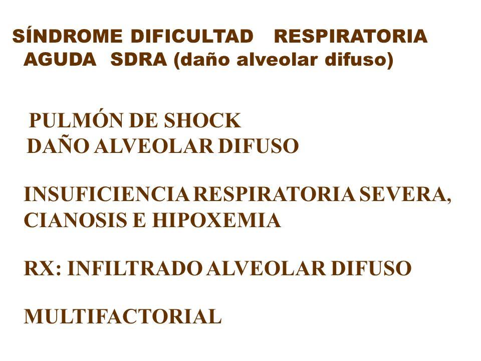 SÍNDROME DIFICULTAD RESPIRATORIA AGUDA SDRA (daño alveolar difuso) PULMÓN DE SHOCK DAÑO ALVEOLAR DIFUSO INSUFICIENCIA RESPIRATORIA SEVERA, CIANOSIS E