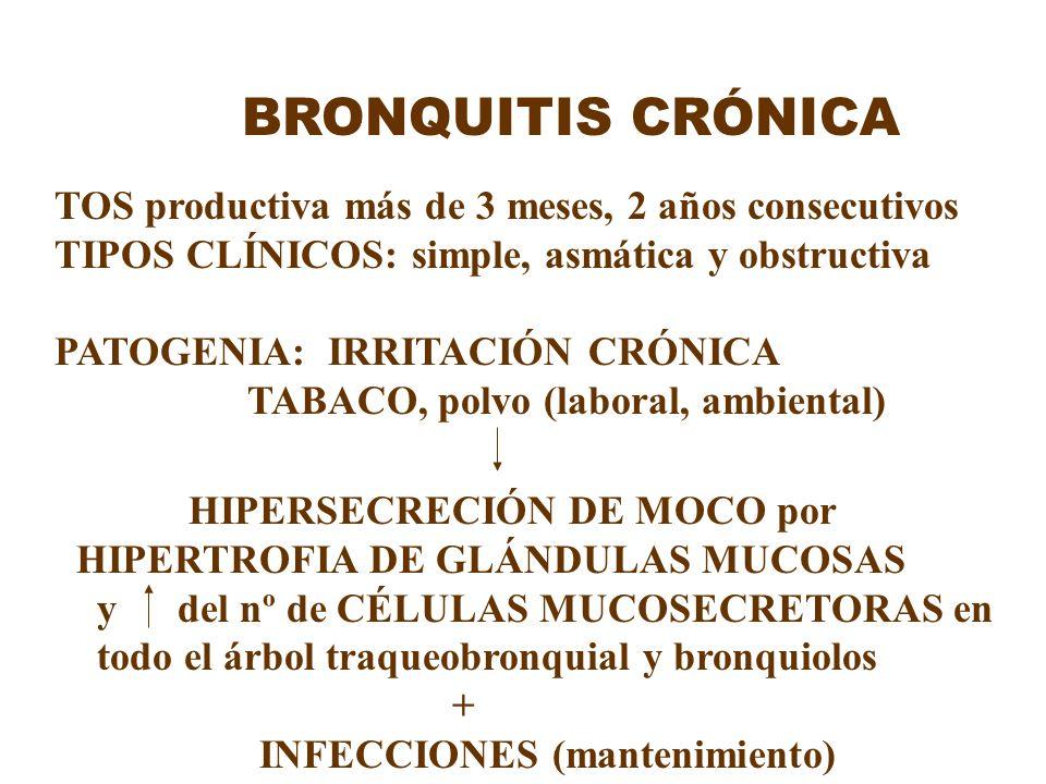 BRONQUITIS CRÓNICA TOS productiva más de 3 meses, 2 años consecutivos TIPOS CLÍNICOS: simple, asmática y obstructiva PATOGENIA: IRRITACIÓN CRÓNICA TAB