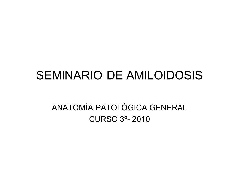 SEMINARIO DE AMILOIDOSIS ANATOMÍA PATOLÓGICA GENERAL CURSO 3º- 2010