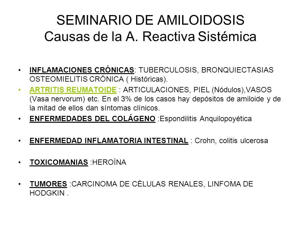SEMINARIO DE AMILOIDOSIS Causas de la A. Reactiva Sistémica INFLAMACIONES CRÓNICAS: TUBERCULOSIS, BRONQUIECTASIAS OSTEOMIELITIS CRÓNICA ( Históricas).