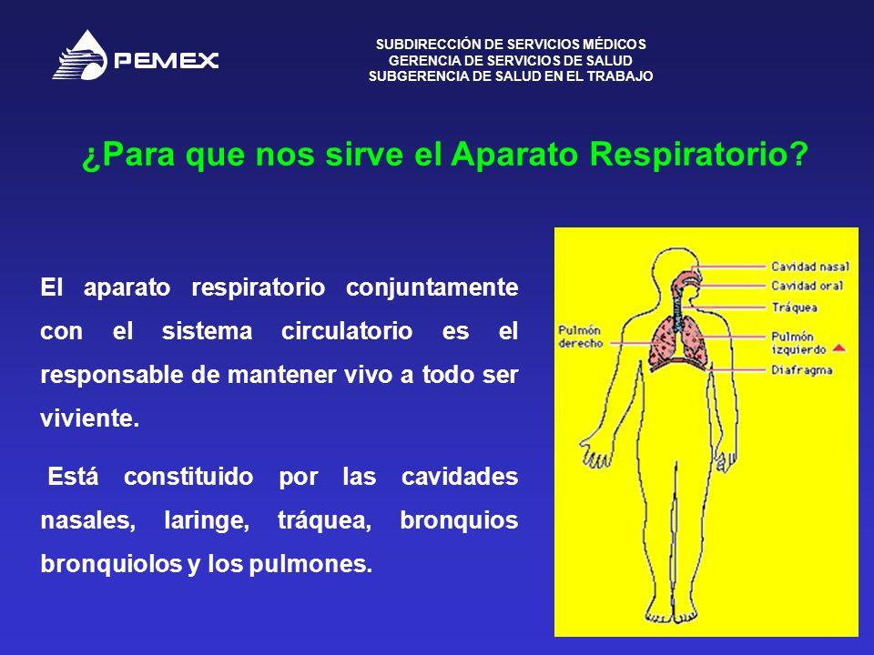 SUBDIRECCIÓN DE SERVICIOS MÉDICOS GERENCIA DE SERVICIOS DE SALUD SUBGERENCIA DE SALUD EN EL TRABAJO 2 ¿Para que nos sirve el Aparato Respiratorio? El