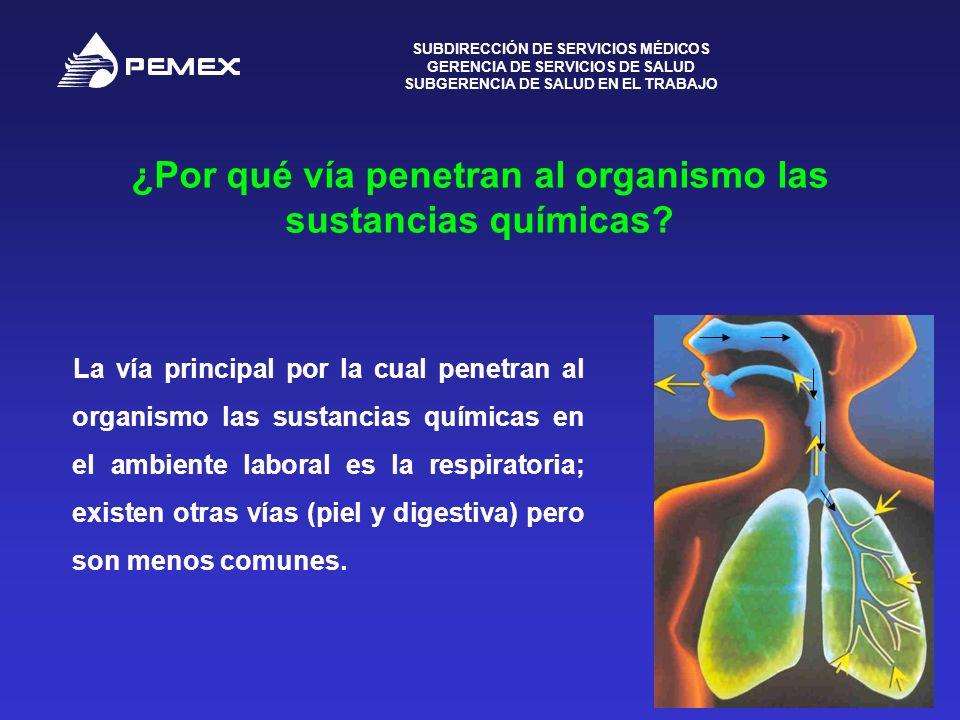 SUBDIRECCIÓN DE SERVICIOS MÉDICOS GERENCIA DE SERVICIOS DE SALUD SUBGERENCIA DE SALUD EN EL TRABAJO 5 ¿Por qué vía penetran al organismo las sustancia