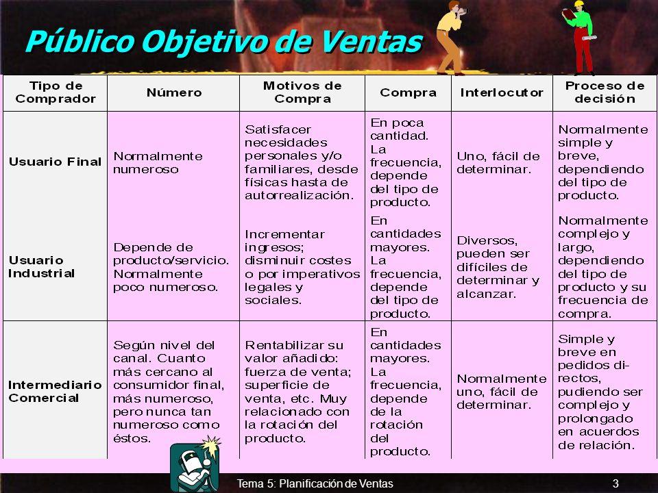 © Enrique Pérez del Campo, 2000 2 Tema 5: Planificación de Ventas Público objetivo de Ventas... quienes deben ser atendidos de forma directa. a) Usuar