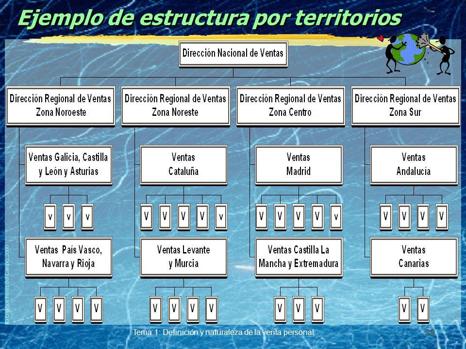 © Enrique Pérez del Campo, 2000 Tema 1: Definición y naturaleza de la venta personal 38 Estructura por territorios Un representante vende en un territorio geográfico todos los productos de la empresa.