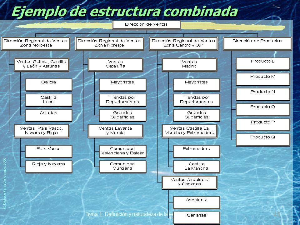 © Enrique Pérez del Campo, 2000 Tema 1: Definición y naturaleza de la venta personal 44 Estructura combinada Ventajas. yLas derivadas de la especializ