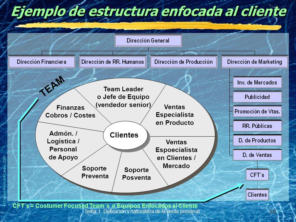 © Enrique Pérez del Campo, 2000 Tema 1: Definición y naturaleza de la venta personal 45 Ejemplo de estructura combinada