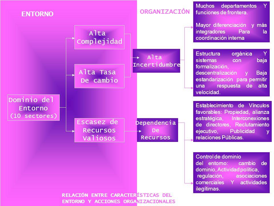 Dominio del Entorno (10 sectores) Alta Complejidad Alta Tasa De cambio Escasez de Recursos Valiosos Dependencia De Recursos Alta Incertidumbre Muchos