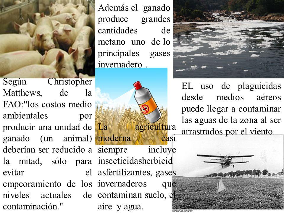 EL uso de plaguicidas desde medios aéreos puede llegar a contaminar las aguas de la zona al ser arrastrados por el viento. Según Christopher Matthews,