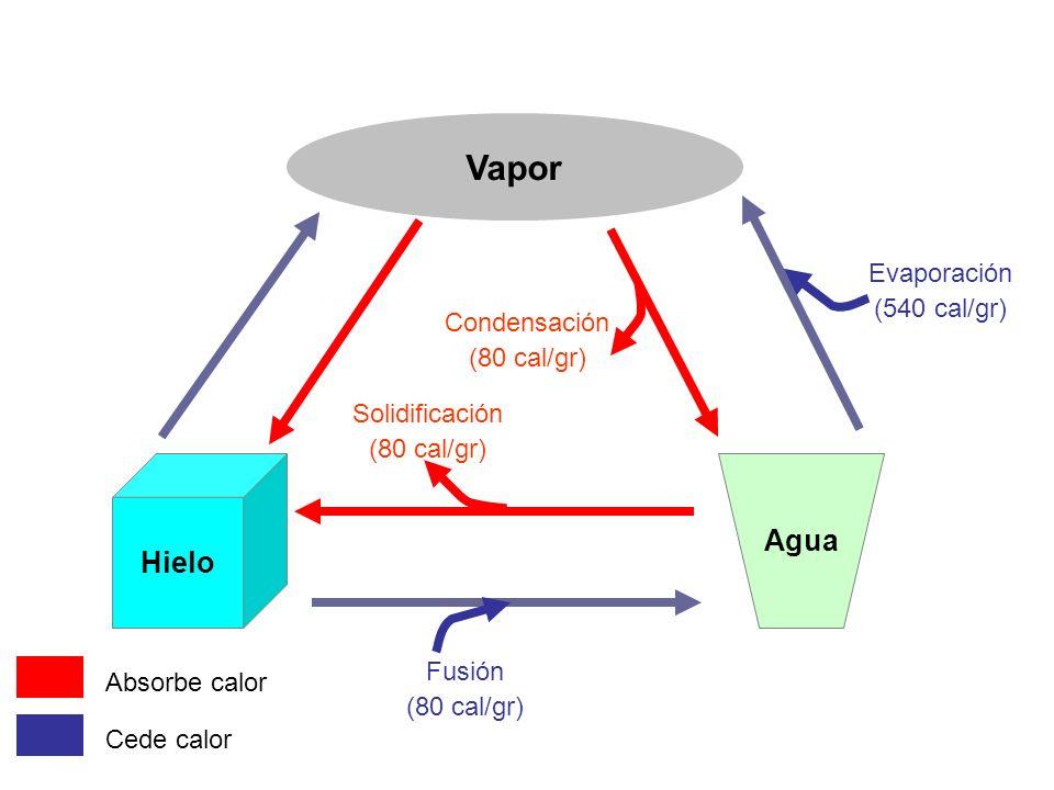 Hielo Agua Vapor Fusión (80 cal/gr) Solidificación (80 cal/gr) Evaporación (540 cal/gr) Condensación (80 cal/gr) Absorbe calor Cede calor