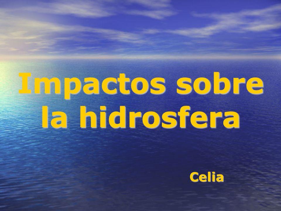 Impactos sobre la hidrosfera Celia