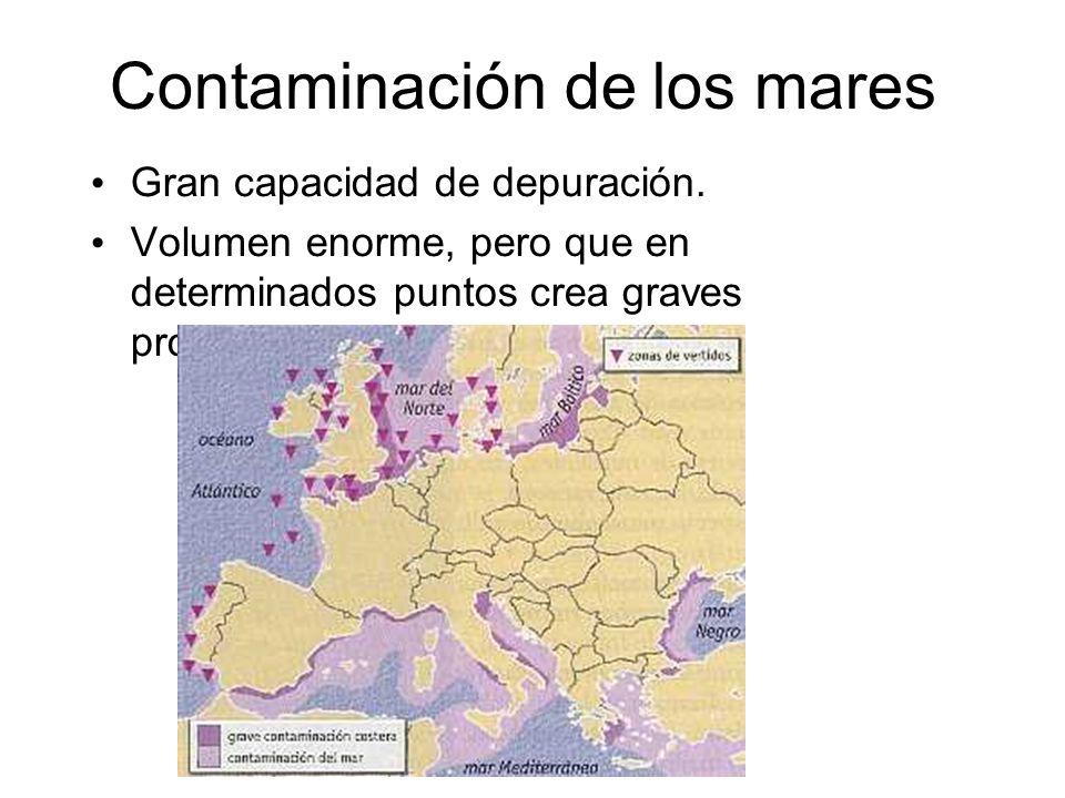 Contaminación de los mares Gran capacidad de depuración.