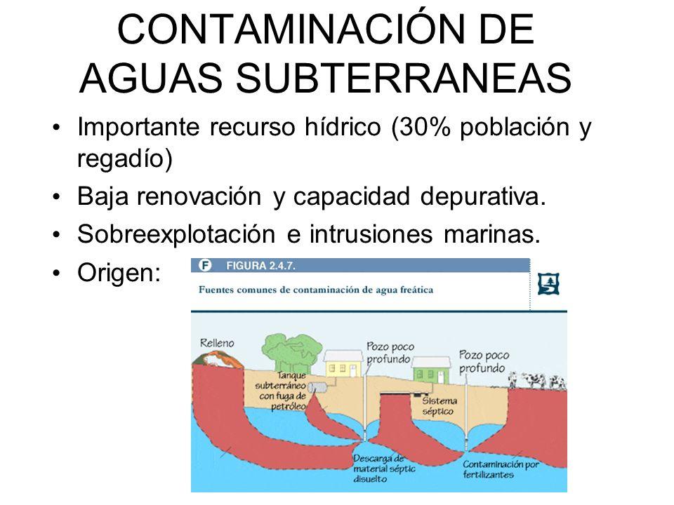 CONTAMINACIÓN DE AGUAS SUBTERRANEAS Importante recurso hídrico (30% población y regadío) Baja renovación y capacidad depurativa.