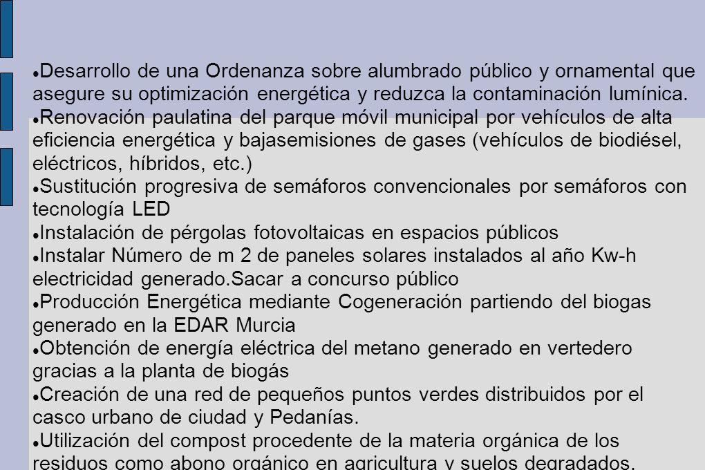 Desarrollo de una Ordenanza sobre alumbrado público y ornamental que asegure su optimización energética y reduzca la contaminación lumínica. Renovació