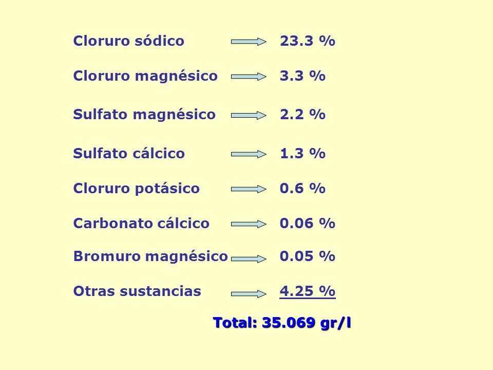 Cloruro sódico 23.3 % Cloruro magnésico 3.3 % Sulfato magnésico 2.2 % Sulfato cálcico 1.3 % Cloruro potásico 0.6 % Carbonato cálcico 0.06 % Bromuro magnésico 0.05 % Otras sustancias 4.25 % Total: 35.069 gr/l