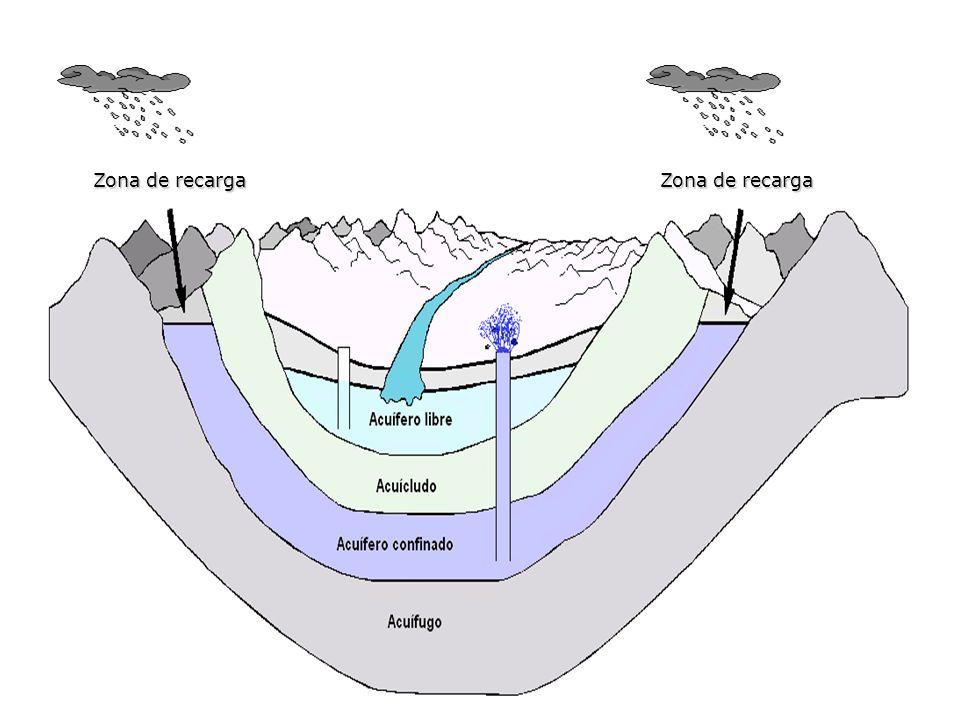 Zona de aireación Subzona edáfica Subzona de retención Subzona capilar Zona de saturación Zócalo impermeable Nivel freático