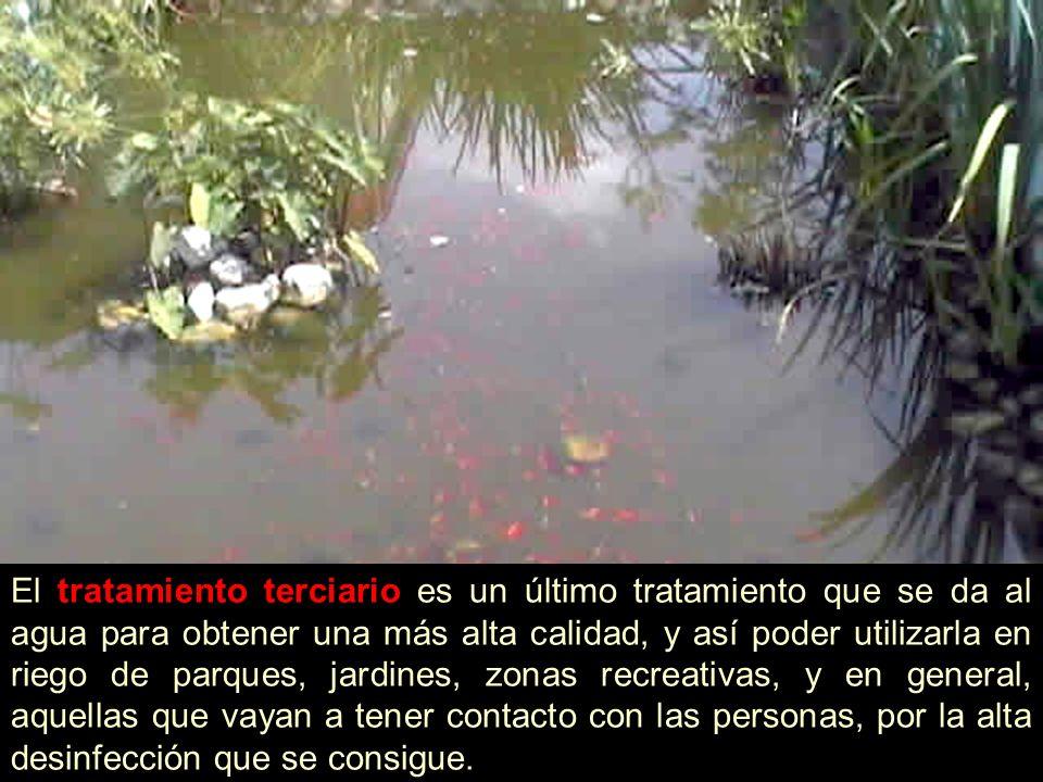 El tratamiento terciario es un último tratamiento que se da al agua para obtener una más alta calidad, y así poder utilizarla en riego de parques, jar