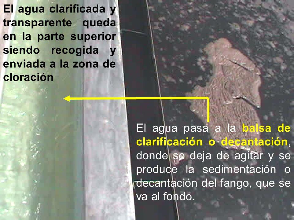 El agua pasa a la balsa de clarificación o decantación, donde se deja de agitar y se produce la sedimentación o decantación del fango, que se va al fo