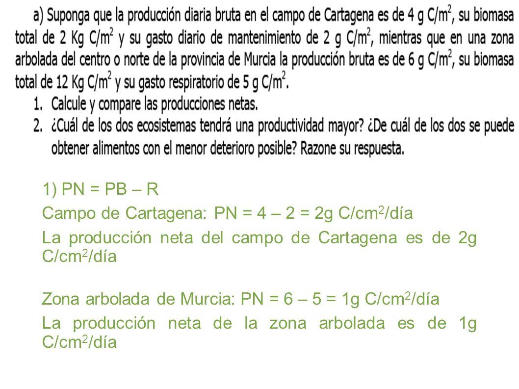 1) PN = PB – R Campo de Cartagena: PN = 4 – 2 = 2g C/cm 2 /día La producción neta del campo de Cartagena es de 2g C/cm 2 /día Zona arbolada de Murcia: PN = 6 – 5 = 1g C/cm 2 /día La producción neta de la zona arbolada es de 1g C/cm 2 /día