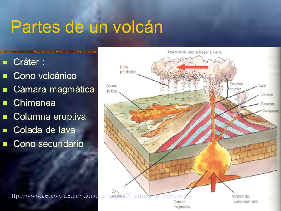 Partes de un volcán Cráter : Cono volcánico Cámara magmática Chimenea Columna eruptiva Colada de lava Cono secundario http://www.geo.wvu.edu/~donovan/geol101/animations/06.swf