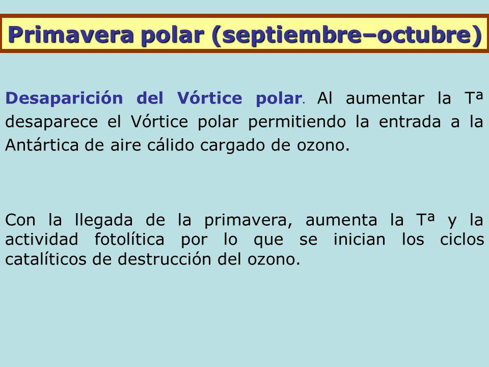 Primavera polar (septiembre–octubre) Desaparición del Vórtice polar.
