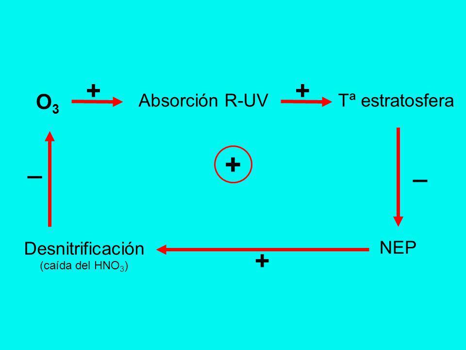 + Tª estratosfera O3O3 Absorción R-UV ++ Desnitrificación (caída del HNO 3 ) + _ NEP _