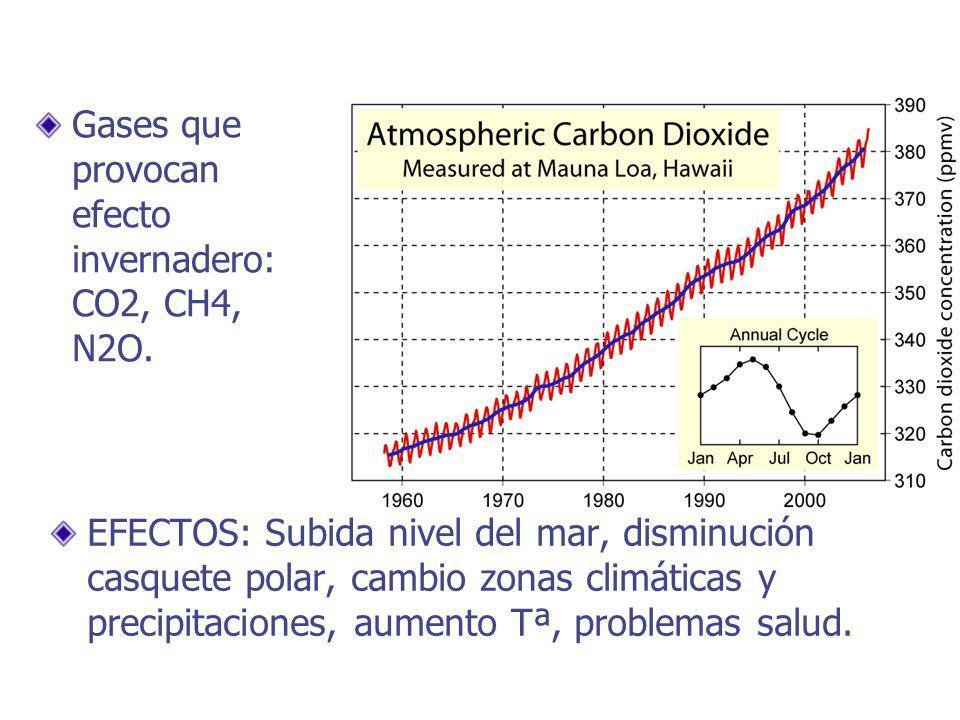 EFECTOS: Subida nivel del mar, disminución casquete polar, cambio zonas climáticas y precipitaciones, aumento Tª, problemas salud.