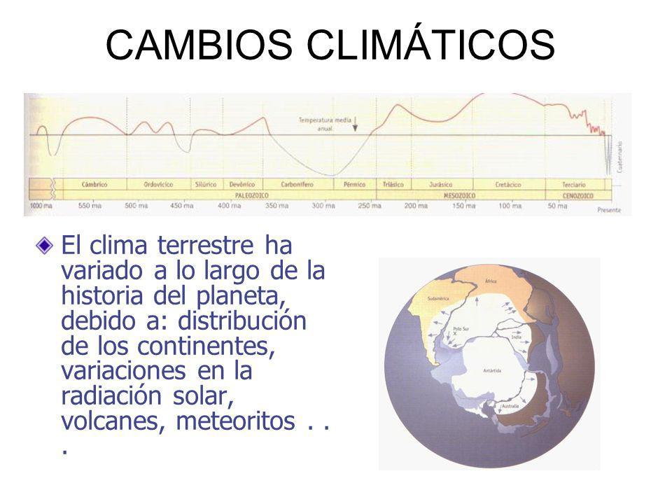 CAMBIOS CLIMÁTICOS El clima terrestre ha variado a lo largo de la historia del planeta, debido a: distribución de los continentes, variaciones en la radiación solar, volcanes, meteoritos...