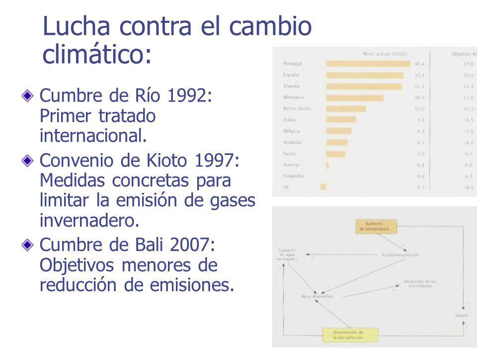 Cumbre de Río 1992: Primer tratado internacional.