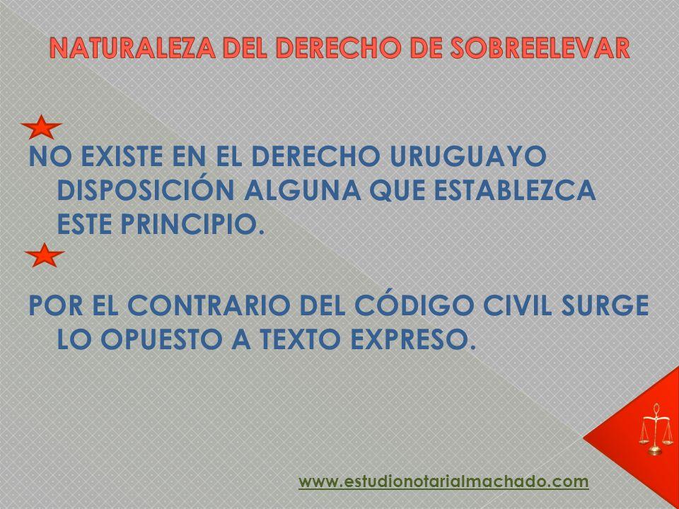 NO EXISTE EN EL DERECHO URUGUAYO DISPOSICIÓN ALGUNA QUE ESTABLEZCA ESTE PRINCIPIO. POR EL CONTRARIO DEL CÓDIGO CIVIL SURGE LO OPUESTO A TEXTO EXPRESO.