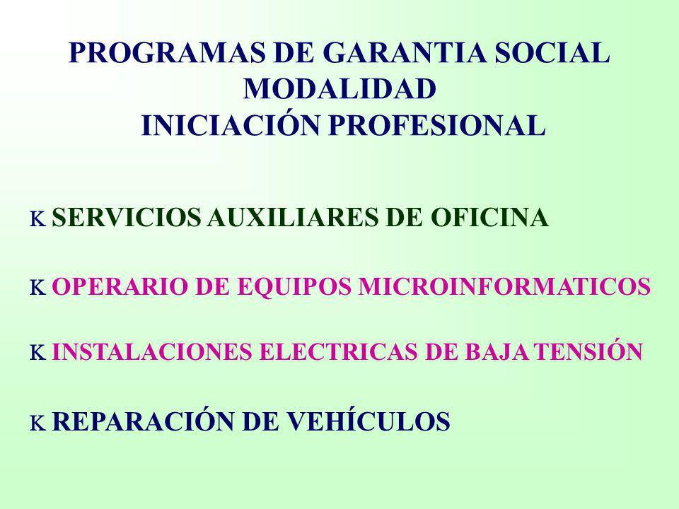 PROGRAMAS DE GARANTIA SOCIAL MODALIDAD INICIACIÓN PROFESIONAL SERVICIOS AUXILIARES DE OFICINA OPERARIO DE EQUIPOS MICROINFORMATICOS INSTALACIONES ELEC