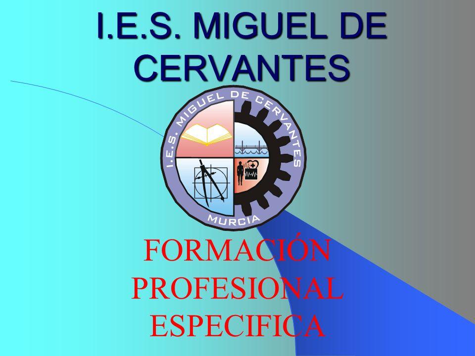 I.E.S. MIGUEL DE CERVANTES FORMACIÓN PROFESIONAL ESPECIFICA