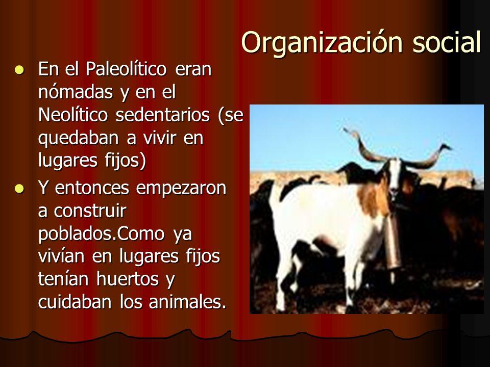 Forma de vida Se alimentaban con gachas de cereales, miel, leche y carne de cabra, de ternera o de oveja. Se alimentaban con gachas de cereales, miel,