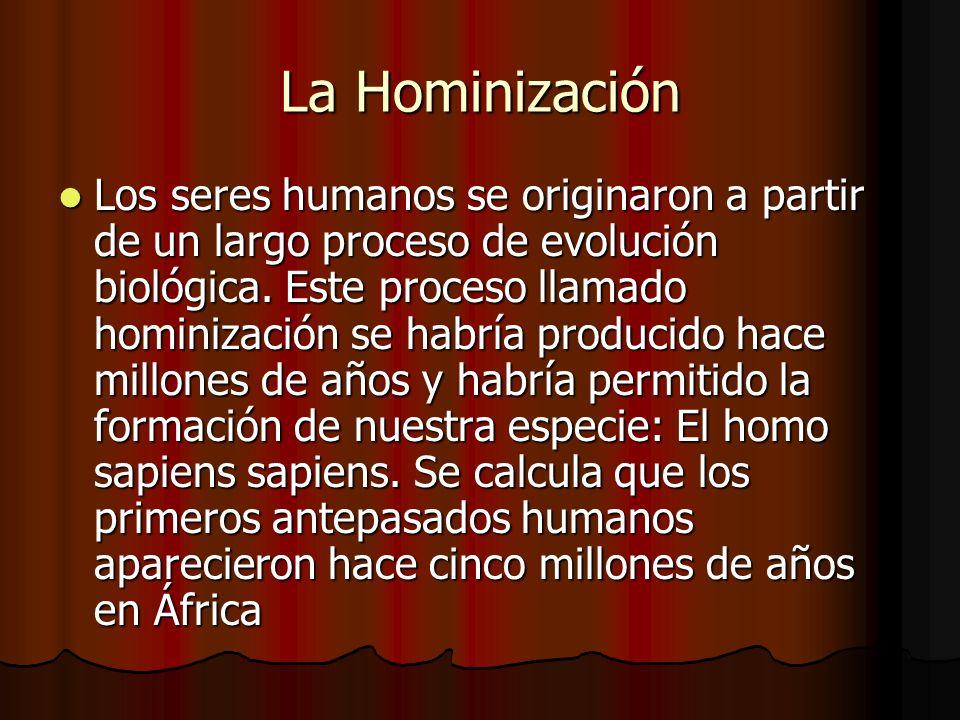 La Hominización Los seres humanos se originaron a partir de un largo proceso de evolución biológica.