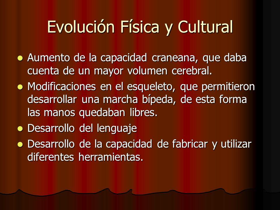 Evolución Física y Cultural Aumento de la capacidad craneana, que daba cuenta de un mayor volumen cerebral.