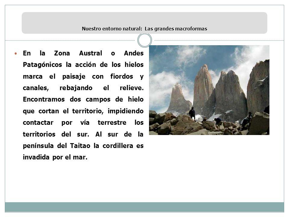 Nuestro entorno natural: Las grandes macroformas En la Zona Austral o Andes Patagónicos la acción de los hielos marca el paisaje con fiordos y canales
