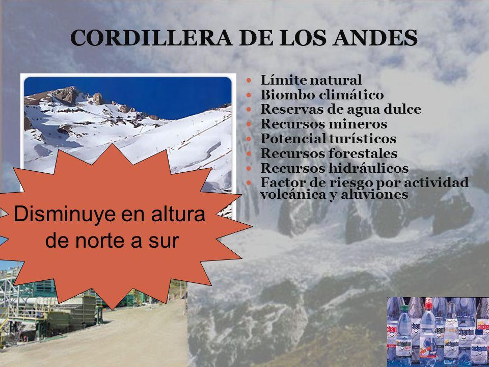 CORDILLERA DE LOS ANDES Límite natural Biombo climático Reservas de agua dulce Recursos mineros Potencial turísticos Recursos forestales Recursos hidr