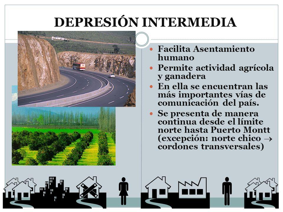 DEPRESIÓN INTERMEDIA Facilita Asentamiento humano Permite actividad agrícola y ganadera En ella se encuentran las más importantes vías de comunicación
