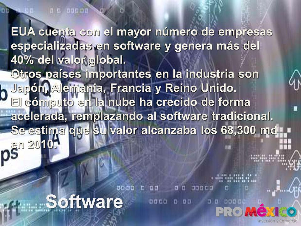 EUA cuenta con el mayor número de empresas especializadas en software y genera más del 40% del valor global. Otros países importantes en la industria