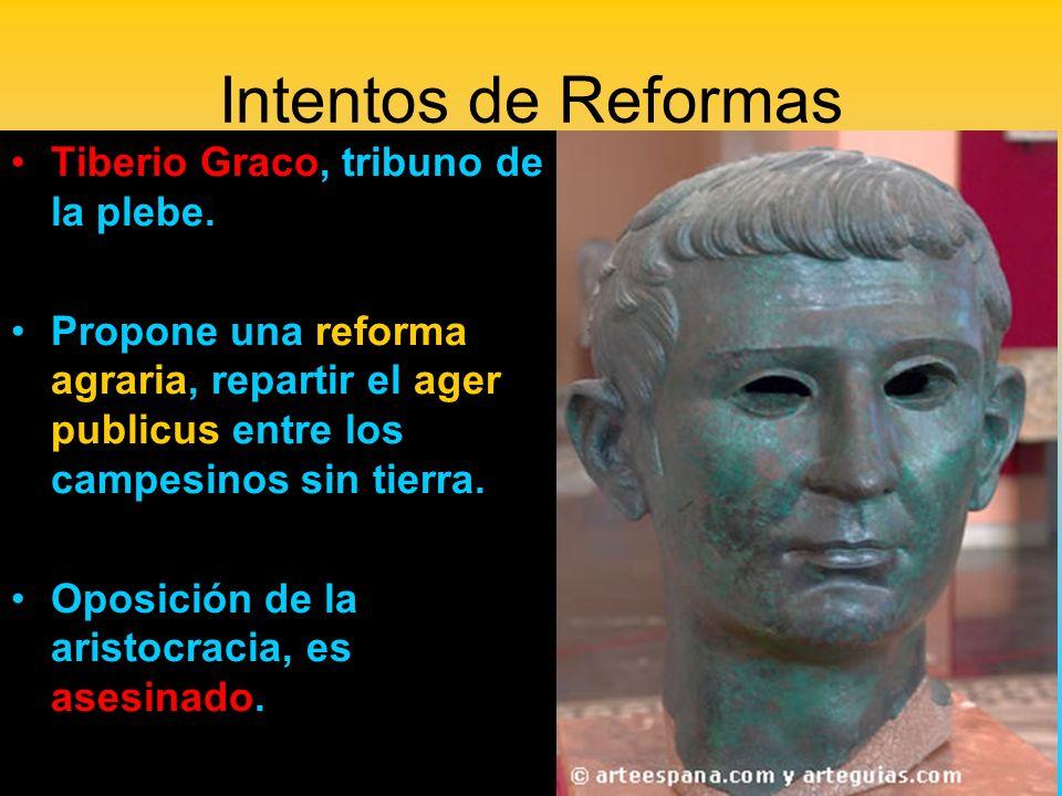 Intentos de Reformas Tiberio Graco, tribuno de la plebe. Propone una reforma agraria, repartir el ager publicus entre los campesinos sin tierra. Oposi