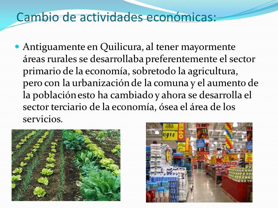 Cambio de actividades económicas: Antiguamente en Quilicura, al tener mayormente áreas rurales se desarrollaba preferentemente el sector primario de l