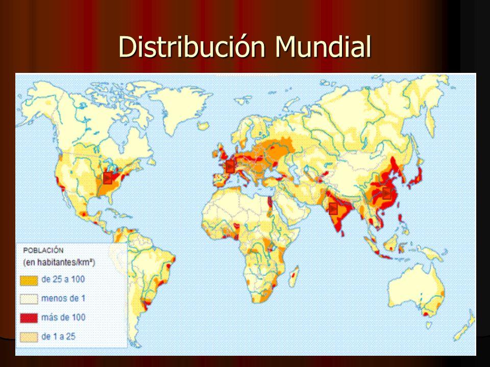 Distribución Mundial