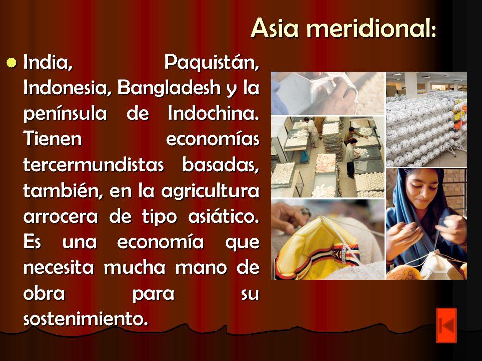 Asia meridional: India, Paquistán, Indonesia, Bangladesh y la península de Indochina. Tienen economías tercermundistas basadas, también, en la agricul