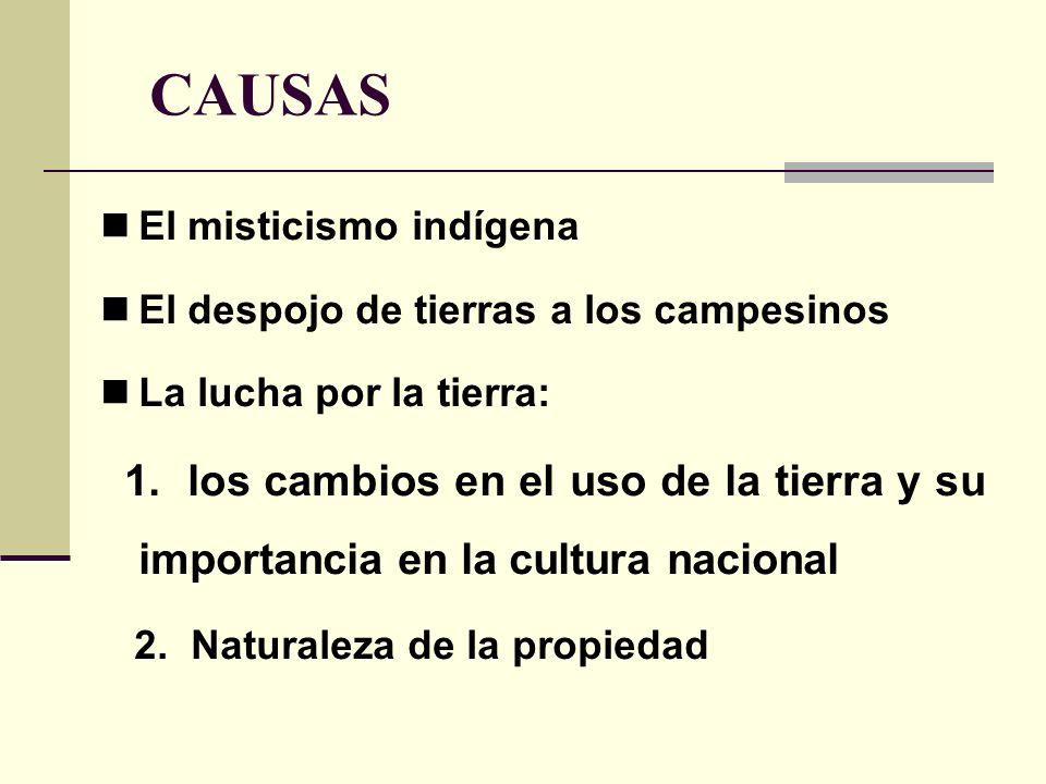 CAUSAS El misticismo indígena El despojo de tierras a los campesinos La lucha por la tierra: 1. los cambios en el uso de la tierra y su importancia en