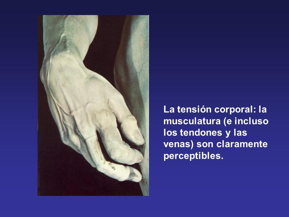 La tensión corporal: la musculatura (e incluso los tendones y las venas) son claramente perceptibles.